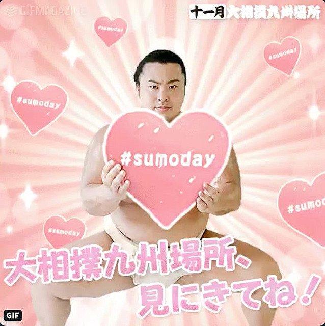 日本相撲協会 ツイッター GIF タップゲーム ハートフル sumodayに関連した画像-04