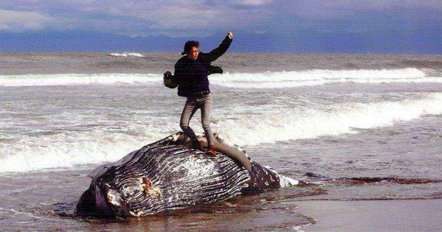 写真コンテスト クジラ 死骸 ガッツポーズに関連した画像-01