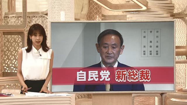 菅内閣 閣僚 人事 自民党に関連した画像-01