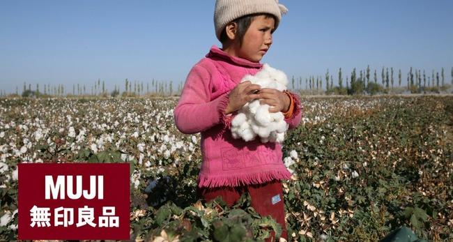 【悲報】無印良品が「新疆ウイグルの綿花を使い続ける」と発表、決算会見で社長は質問を無視