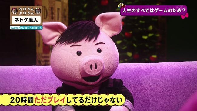 ネトゲ ネトゲ廃人 NHK 特集 ねほりんぱほりんに関連した画像-14