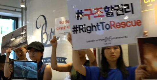 韓国ロッテリアヴィーガン抗議デモに関連した画像-01