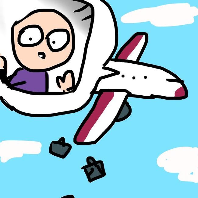国際線 飛行機 機内 スーツケース 空を飛ぶ 荷物 ツイッター 日本語に関連した画像-03