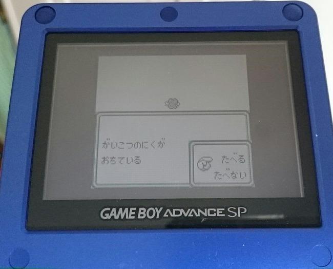 ゲーム 子供 アイテム 骸骨 肉に関連した画像-02