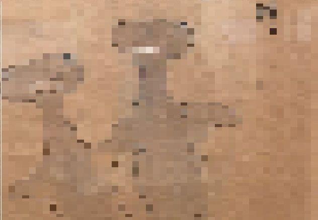 江戸時代 シュモクザメ 絵 隠岐国産物絵図註書 海と暮らしの史料館に関連した画像-01
