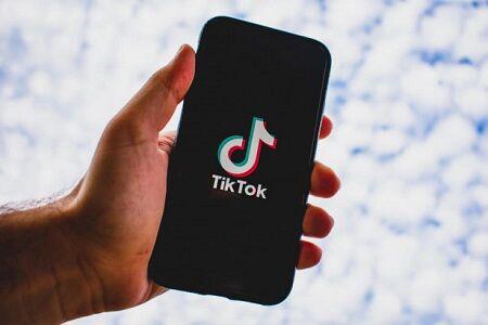 日本でもTikTokの利用を禁止か 中国アプリの利用制限を提言