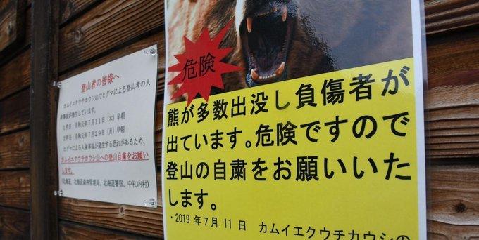 北海道 登山 熊 駆除に関連した画像-01