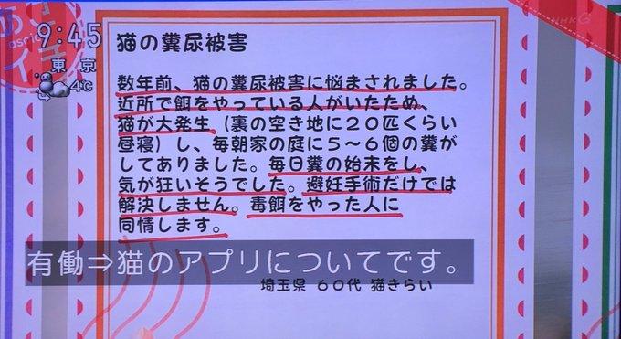 野良猫 地域猫 アプリ あさイチ 毒殺に関連した画像-09