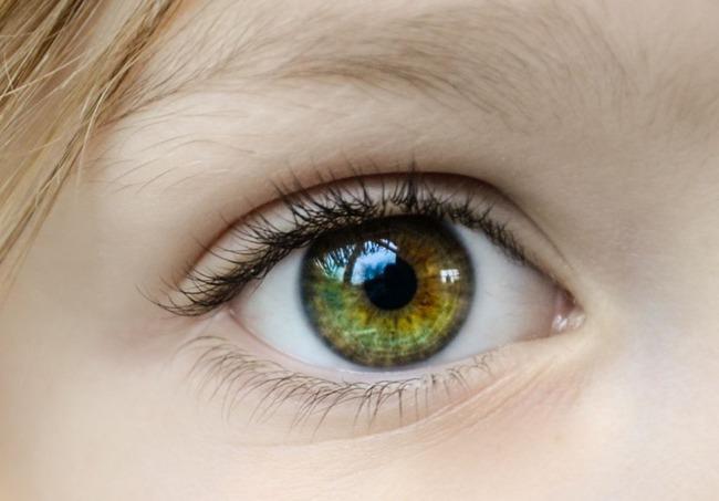 目 ハチ 涙に関連した画像-01