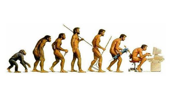 猿 人間 信頼関係に関連した画像-01