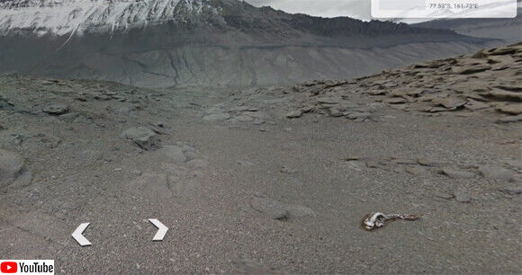 南極 謎生物 未確認生物 UMA 発見に関連した画像-04