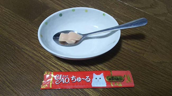 猫 おやつ ちゅ〜る 実験 人間に関連した画像-16