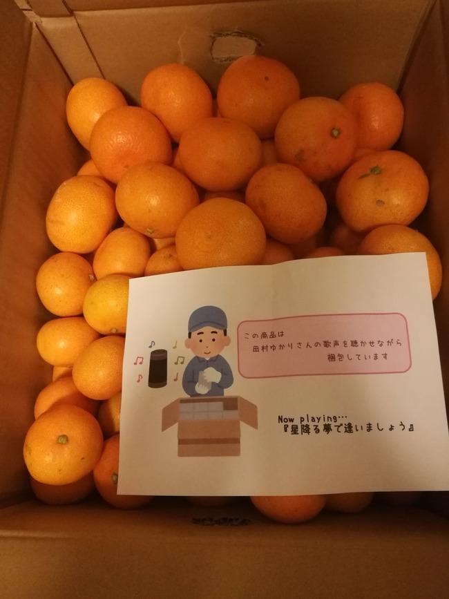 みかん 農業 田村ゆかり ダンボール 曲 包装に関連した画像-02