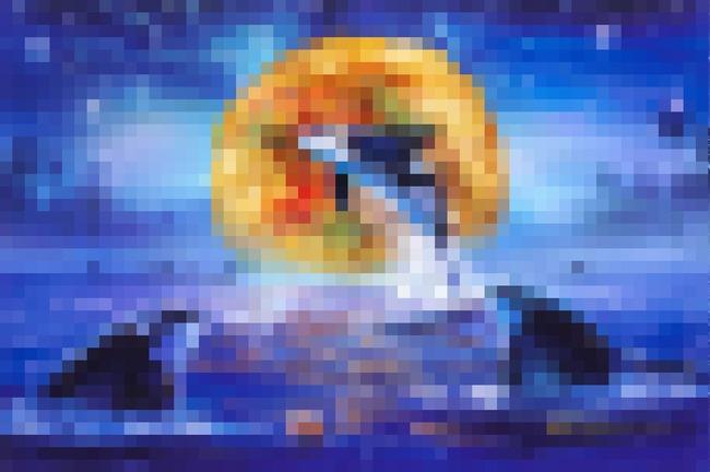 公式が病気 どん兵衛 日清 ラッセン 奇跡的 コラボ シャチ かきあげ  に関連した画像-01