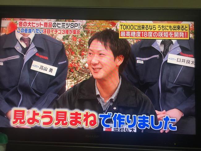 TOKIO イチゴ農家 イチゴ 見よう見まね 品種改良 成功 大ヒット 咲姫に関連した画像-04