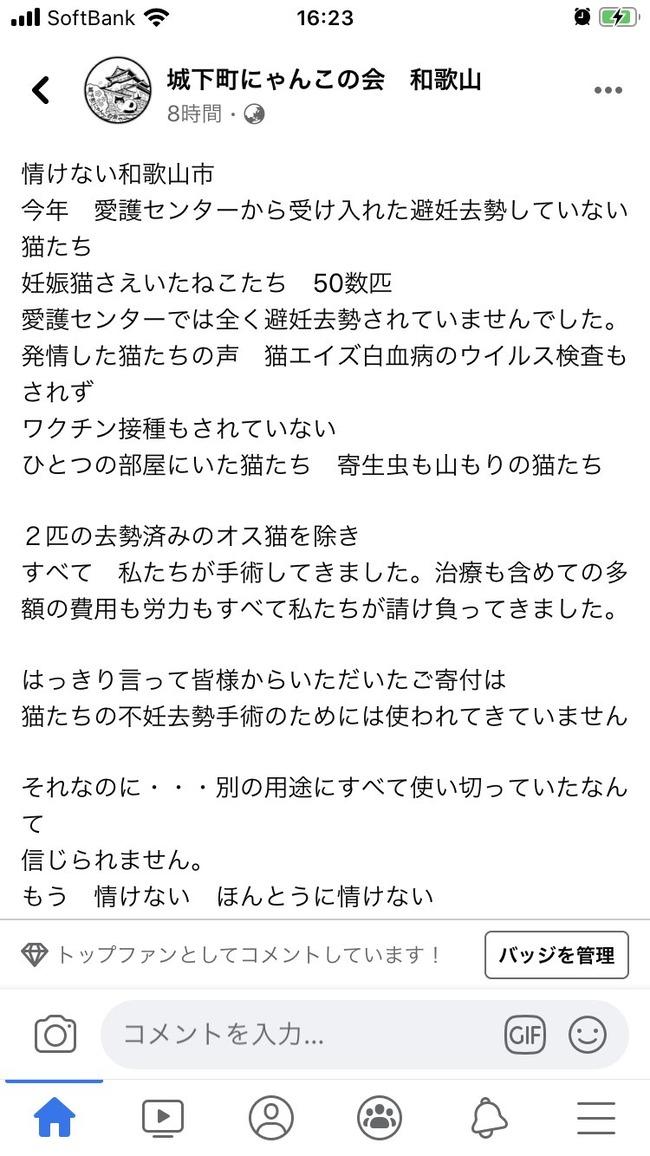 和歌山市 猫 動物愛護 クラウドファンディング 不正に関連した画像-03