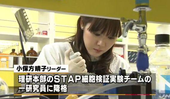 STAP細胞 小保方晴子に関連した画像-01