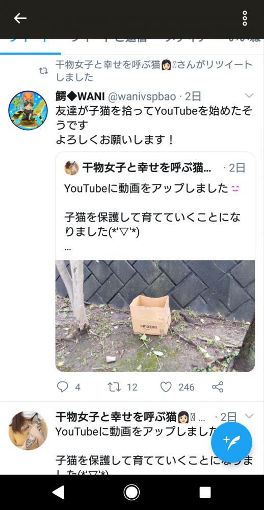 動物 YouTuber 猫 自演に関連した画像-09