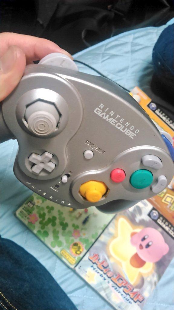 小学生 ゲーム機 ハード ゲームキューブ GC 鈍器に関連した画像-05