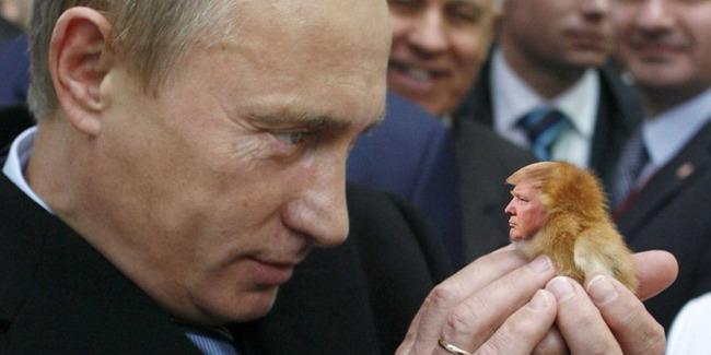 プーチン大統領 トランプ大統領 スノーデンに関連した画像-01