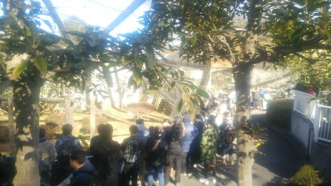 けものフレンズ 多摩動物公園 聖地巡礼 オタク サーバルに関連した画像-02