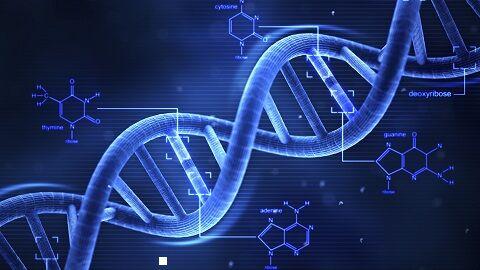 遺伝子 テロメア 老化 若返り イスラエル 実験 世界初 高圧酸素に関連した画像-01