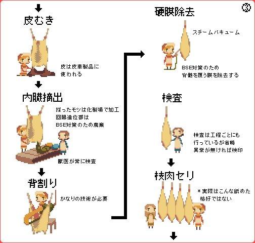 牛肉 牛 飼育 フローに関連した画像-04