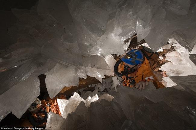 微生物 クリスタル 封印 生命体 結晶 5万年に関連した画像-05