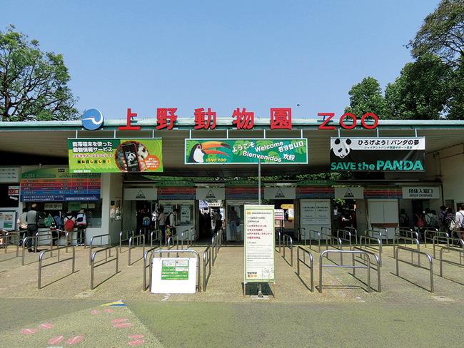 上野動物園 学校 中学校に関連した画像-01