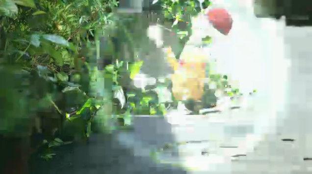 ポケットモンスター ポケモンに関連した画像-09