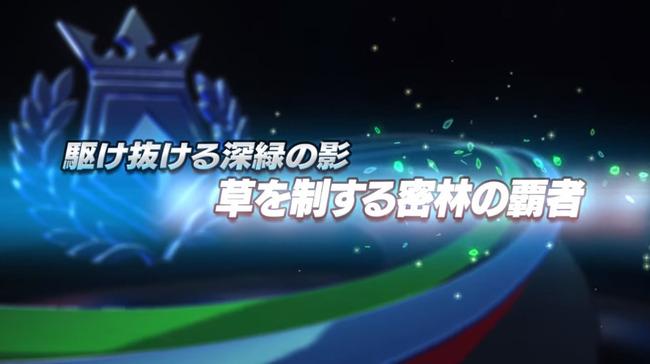 ポケモン ポケットモンスター ポッ拳 ジュカイン カモネギ マルマインに関連した画像-02