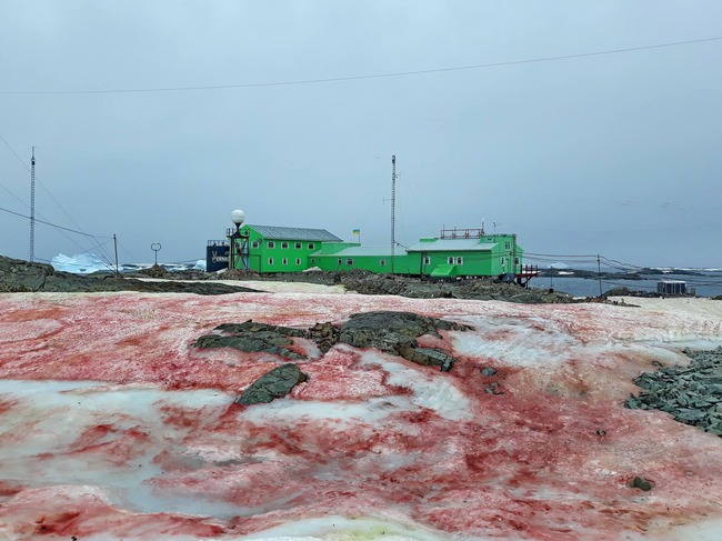 南極基地周辺 血の雪 猟奇的に関連した画像-04