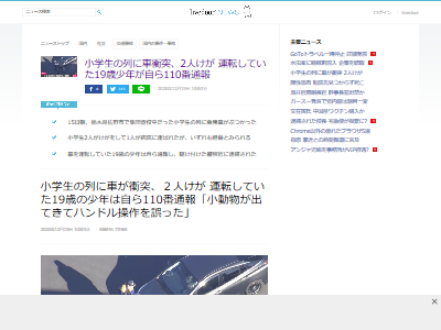 栃木小学生交通事故19歳対応に関連した画像-02