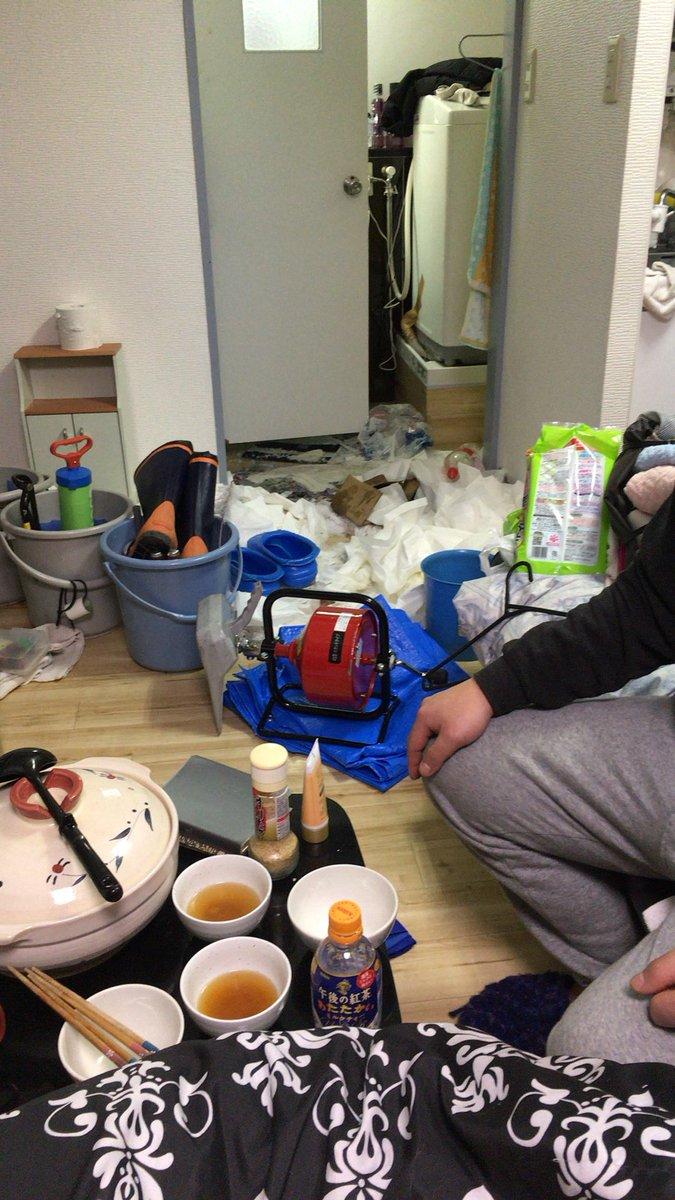 ペット トイレ 砂 猫砂に関連した画像-04