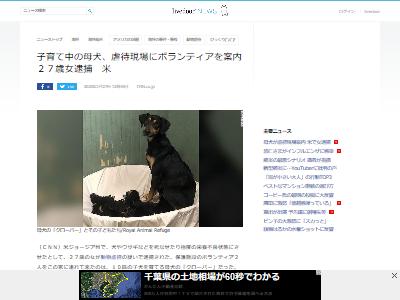 犬虐待ボランティア案内に関連した画像-02