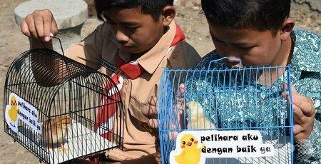 ひよこ スマホ 脱 離れ インドネシア チキナイゼーションに関連した画像-01