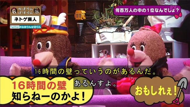 ネトゲ ネトゲ廃人 NHK 特集 ねほりんぱほりんに関連した画像-20