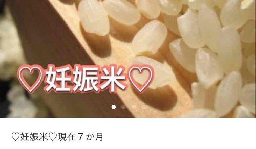 メルカリ 妊娠米 妊娠菌に関連した画像-01