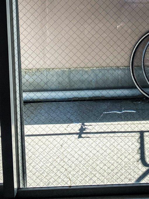気温35度 エアコン 冷房 18度 窓割れる 熱割れに関連した画像-04