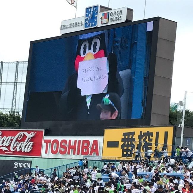 畜ペン 畜生ペンギン つば九郎 ヤクルト マスコット AKB総選挙 結婚 NMB48 須藤凜々花に関連した画像-02