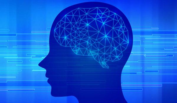 学校 理科室 脳みそ ホルマリン漬け 標本に関連した画像-01
