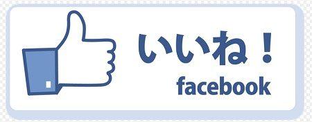 Facebook フェイスブック スイス 有罪 SNS 活動家に関連した画像-01