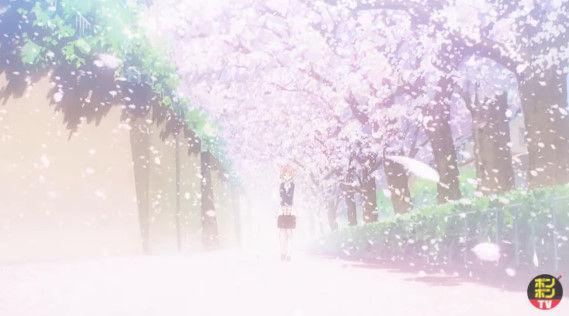 カードキャプターさくら 新アニメ クリアカード編 OVAに関連した画像-13