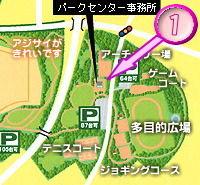 map-81