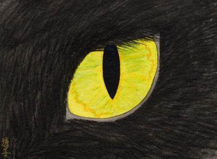 c003blackcats-eye