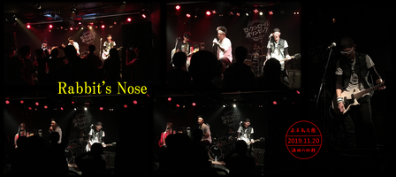 Rabbit's Nose