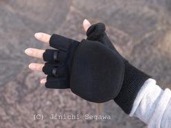 寒中撮影用手袋