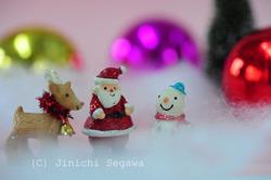 クリスマスカードを撮る