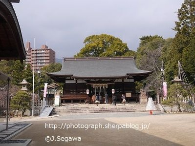 弓弦羽(ゆづるは)神社