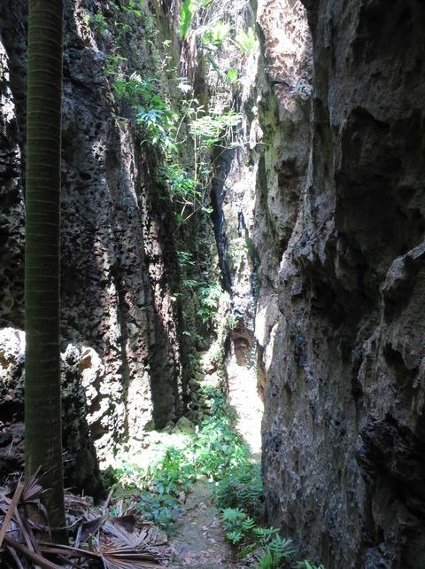 大東島バリバリ岩